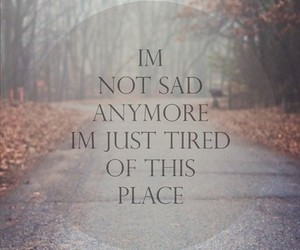 forest, street, and text image