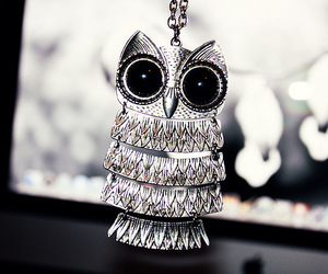 owl, necklace, and silver image