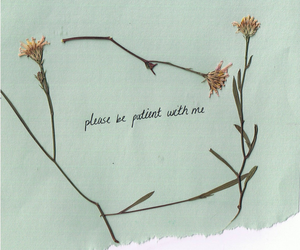 flowers, patient, and quote image