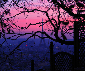 paris, pink, and tree image