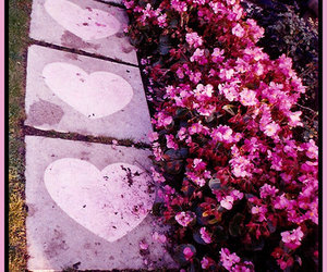 flowers, hearts, and pink image