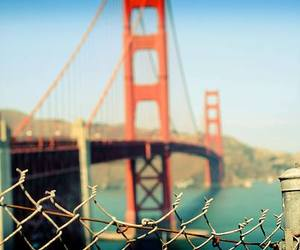 photography, san francisco, and bridge image