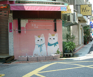 cat, pink, and japan image