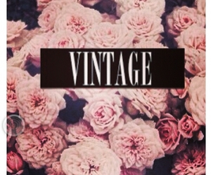 vintage, flowers, and rose image