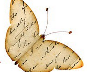 butterfly, Letter, and old image