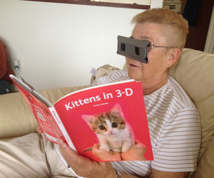 cat, 3d, and funny image