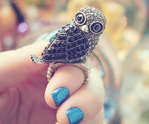 owl, ring, and nails image