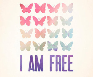 free, butterfly, and life image