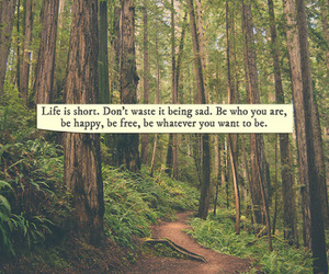 life, quotes, and forest image