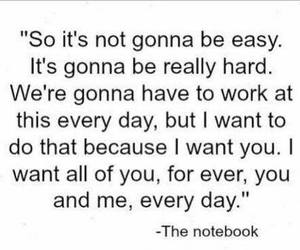 quote, love, and the notebook image