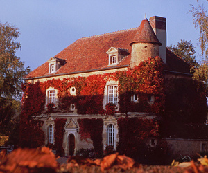 house, autumn, and photography image