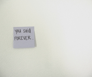 forever, lies, and text image
