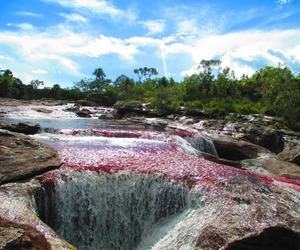 beautiful, colors, and colombia image