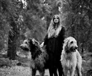dog, girl, and forest image