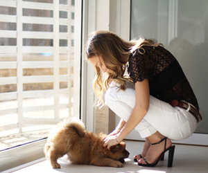 adorable, blonde, and dog image