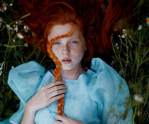 snake, redhead, and nature image