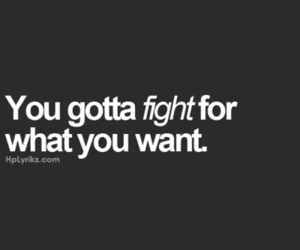 fight, gotta, and quote image