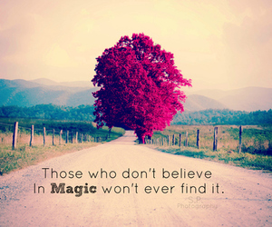 magic, believe, and quote image