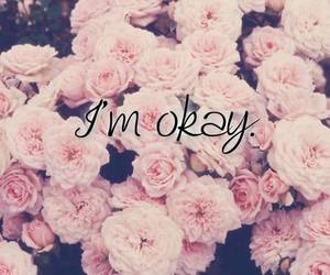 okay, rose, and flowers image