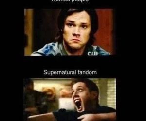 supernatural, fandom, and dean winchester image