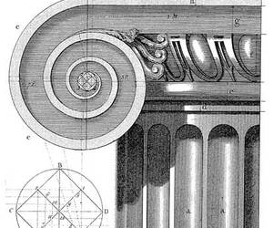 architecture, ionic order, and greek architecture image
