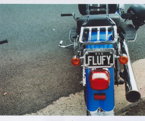 bike, flufy, and street image