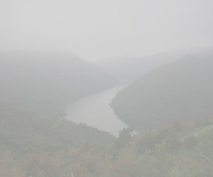 pale and fog image
