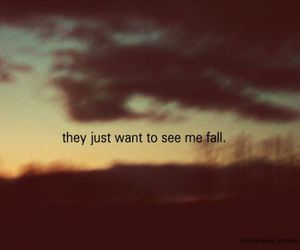 photography, quote, and trees image