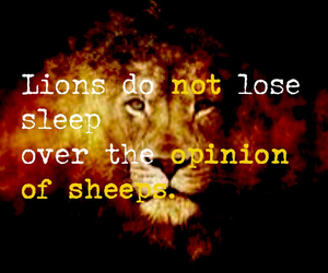 lion, quote, and quotes image