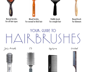 hair, Brushes, and guide image
