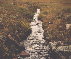 fields, indie, and water image