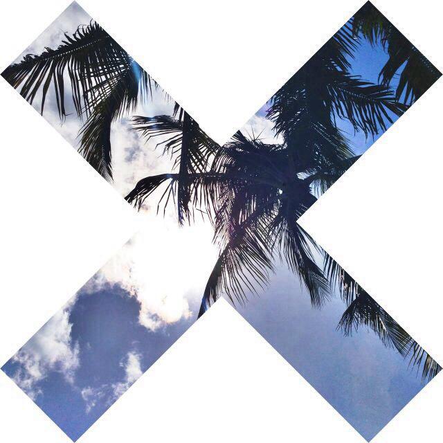 blue sky, palm tree, and x image