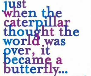 quote, butterfly, and caterpillar image