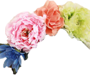 overlays and flowercrown image