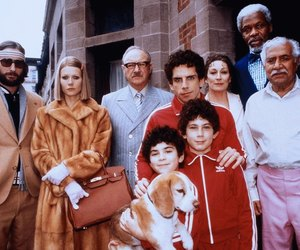 wes anderson, movie, and The Royal Tenenbaums image