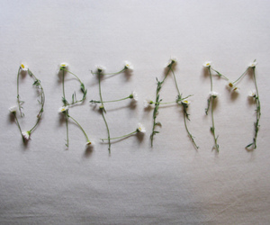 Dream, flowers, and daisy image