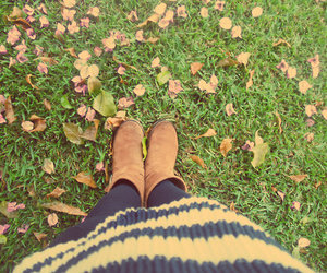 *-*, autumn, and brown image