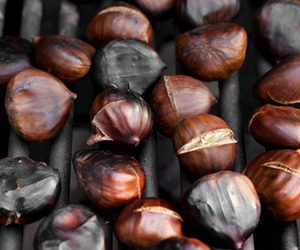 chestnuts image
