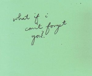 quote, text, and forget image