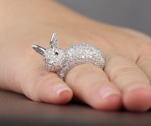 animal, bunny, and nails image