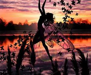 fairy and butterfly image