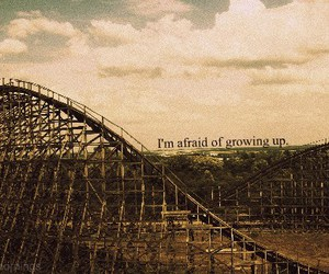 afraid, rollercoaster, and grow image