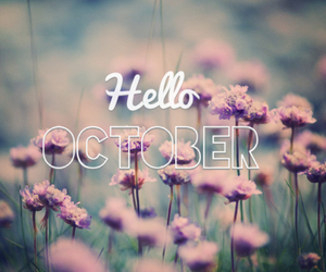 flowers, october, and hello image