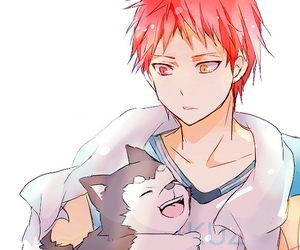 anime, kuroko no basket, and knb image