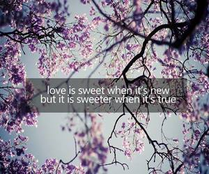 love, quote, and sweet image