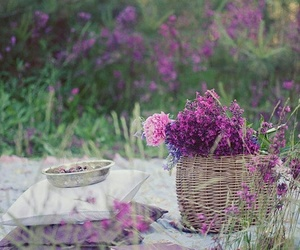 flowers, picnic, and book image