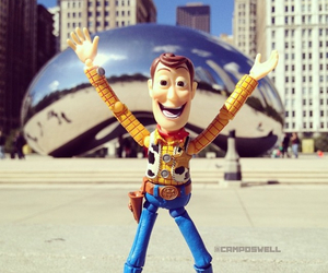 chicago, picture, and woody image
