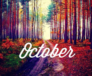 autumn, beautiful, and hello image