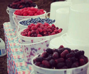 berry, blackberry, and blueberry image