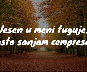 balkan, jesen, and citati image